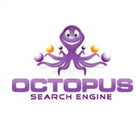 Octopus SEO logo design