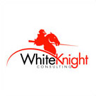 WhiteKnight Consulting Logo Design